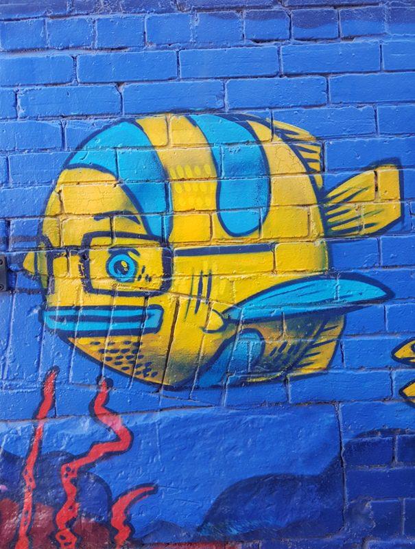 Fish! Or a submarine?