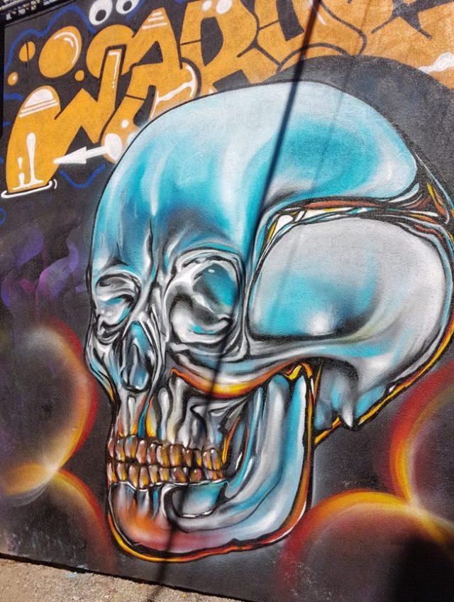 Creepy surreal skulls are my jam!